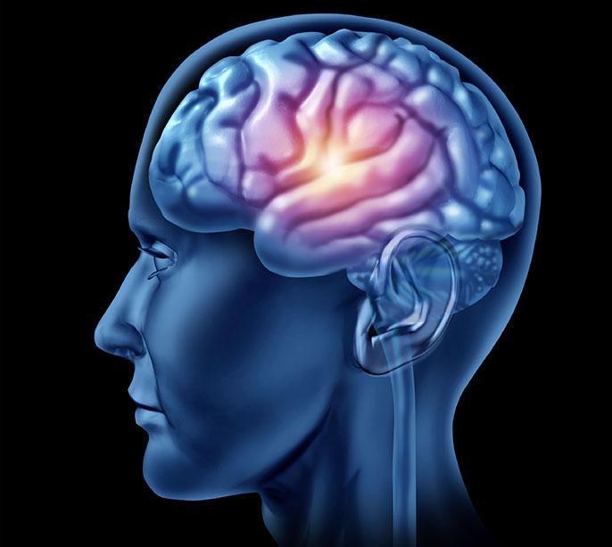 Brain vitamin supplements image 1