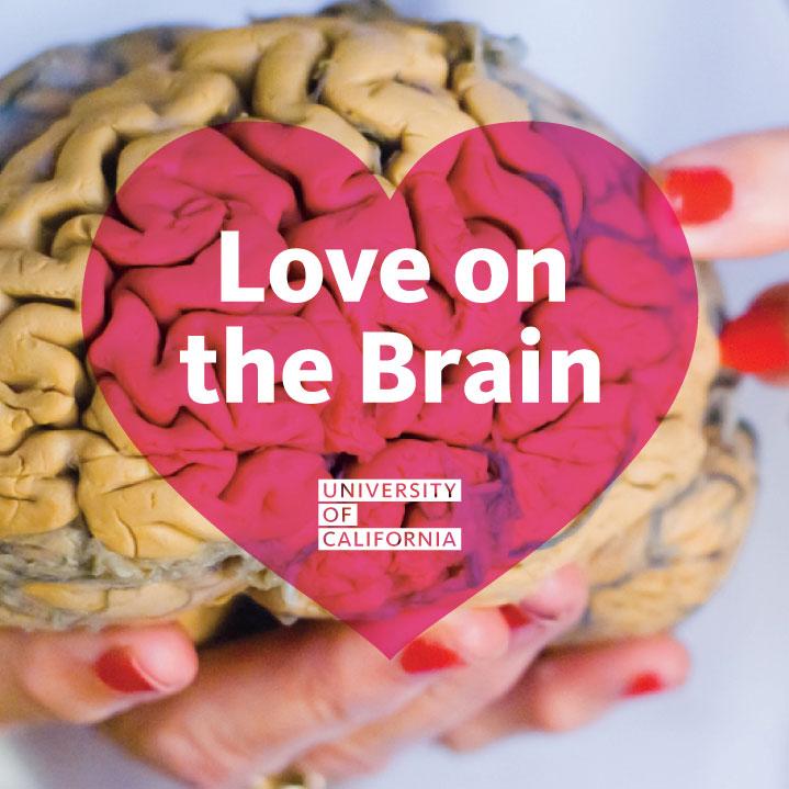 UC love on the brain