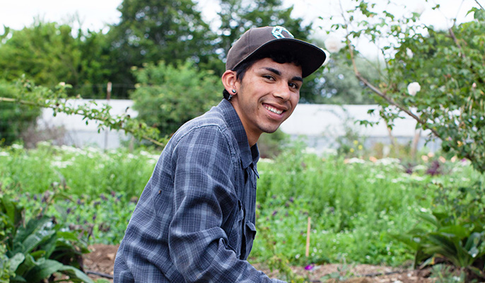 UC Santa Cruz student David Robles has worked at the Center for Agroecology and Sustainable Food Systems and is a UC Global Food Initiative student fellow.